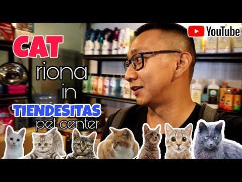 best pets store