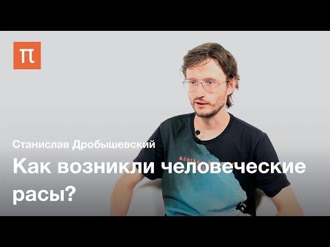 Происхождение человеческих рас — Станислав Дробышевский / ПостНаука