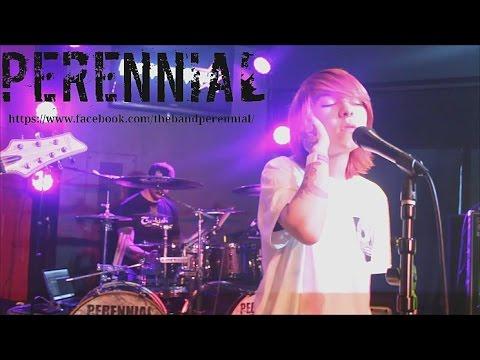 Perennial - Full Set - 03/31/17