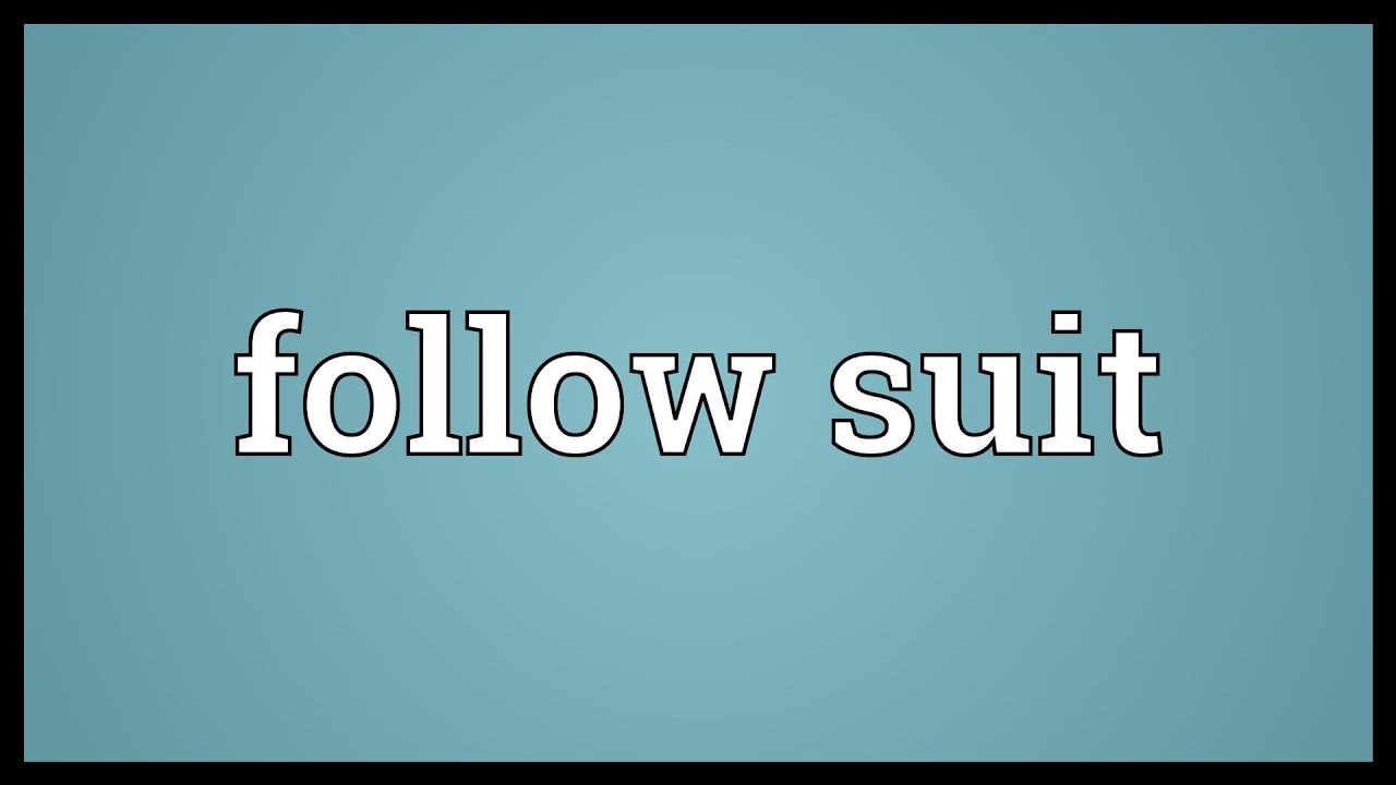follow suit meaning youtube