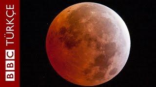 Hızlandırılmış çekimle, en kısa 'Kanlı Ay Tutulması' - BBC TÜRKÇE