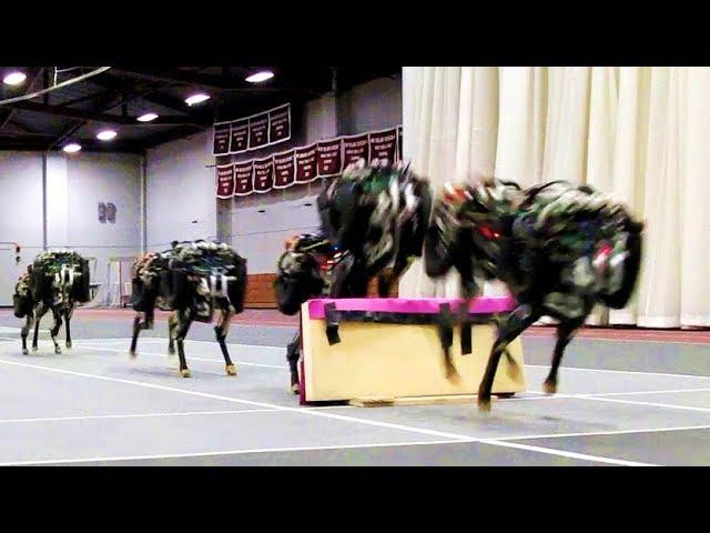 Cheetah Robot That Is BLIND But Can See, Climb, Run And Jump