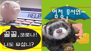 코로나시대-경기 침체는 어떻게 버텨야 옳지?     #…