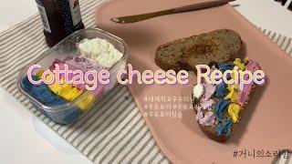 세계학교우유의날 / 우유요리 레시피 / 코티지치즈 만들…