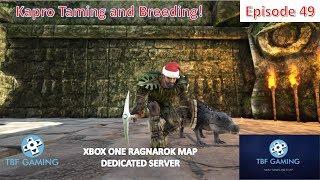 Ragnarok E49 Kapro Taming and Babies Ark Survival Evolved Ragnarok Map on the TBFG Server