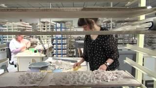 Concours porcelaine 2014 : Mari Paikkari