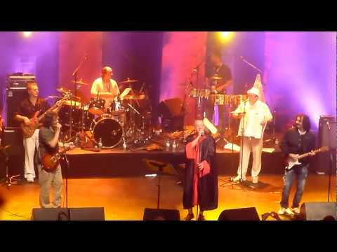 Emir Kusturica & The No-Smoking Orchestra - Pitbull Terrier (Live at Montreal Jazz Fest)