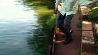 Pescaria com molimão