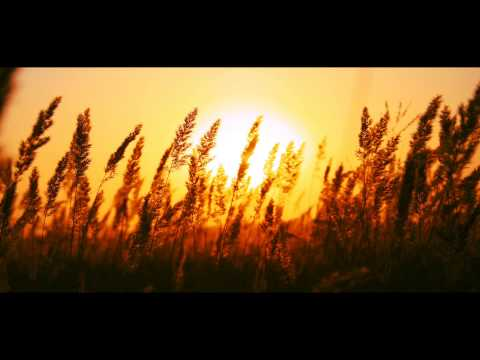 Kash Trivedi - Sun (Original Mix)