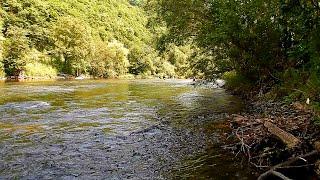 Рыбалка в Приморье Река Журавлевка 28 07 2019 г