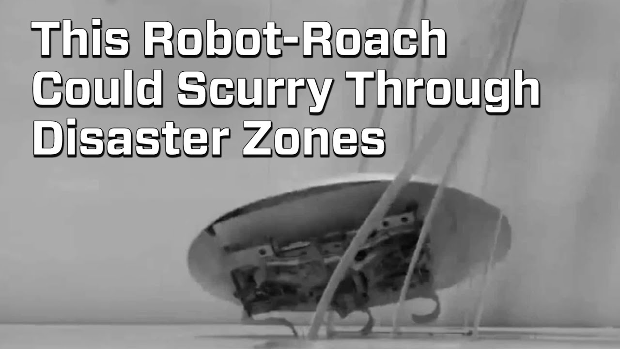 robo roach could easily scurry through disaster zones youtube