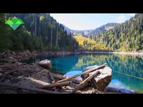 Фильм Рицинского Реликтового Национального Парка.