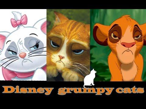 Grumpy Cat Princess