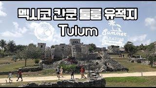 고대 마야 문명 유적지 툴룸의 이구아나! #멕시코칸쿤 …