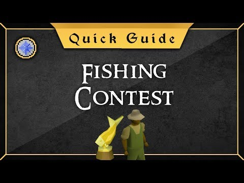 [Quick Guide] Fishing Contest