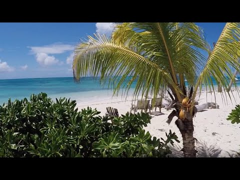 Denis Private Island, Seychelles – Unique Barefoot Luxury, Ecotourism & Pure Relaxation