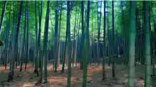 Korean movie Kali Swahili