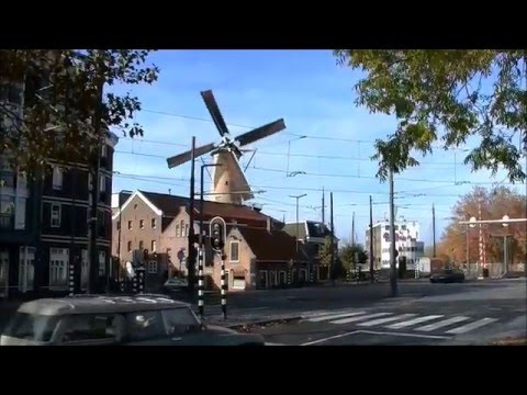 Schiedam -  Molens  - 2015 12 22