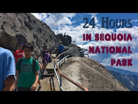 24 Hours in Sequoia National Park California