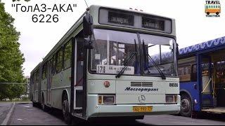 ''Транспорт в России''. Автобус ''ГолАЗ-6226'' | ''Transport in Russia''. Bus ''GolAZ-6226''