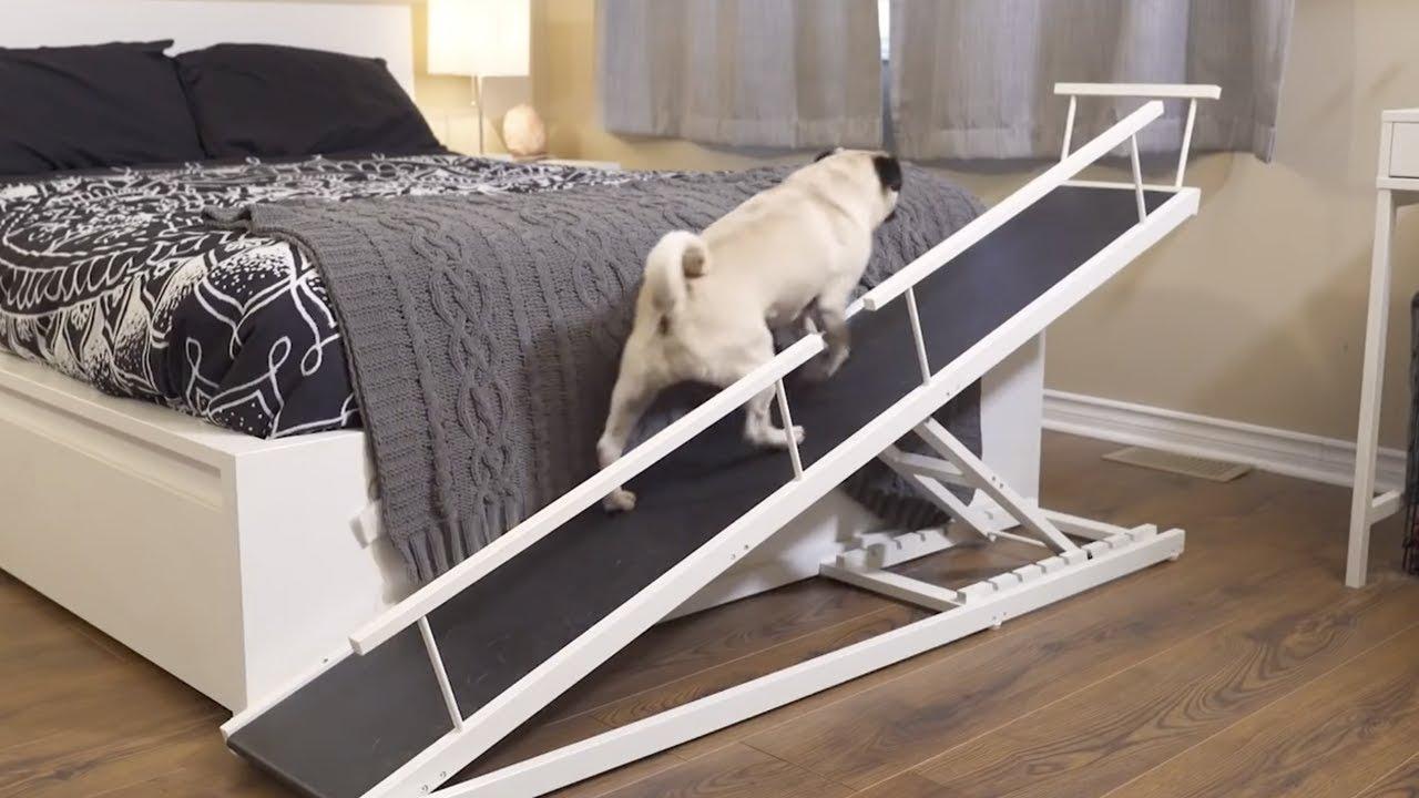 Lit Pour Chien Palette cette rampe aide votre chien à monter facilement sur votre lit