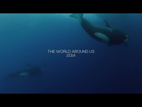 2014: THE WORLD AROUND US
