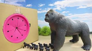 ゴリラのすぽすぽ動画まとめ 色んな種類のタキロンボックスとリアルなゴリラフィギュア