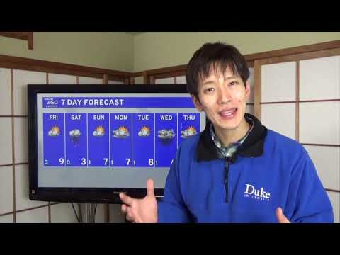 Know And Go Tokyo Weather: February 8, 2019