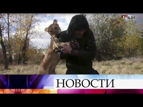 саратов татьяна 27 лев знакомства
