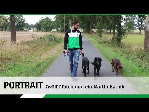Zwölf Pfoten und ein Martin Harnik | Portrait | Hannover 96 - FC St. Pauli