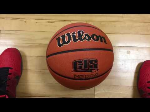 Basketball reviews - Spalding official NBA ball & Wilson Evolution ball