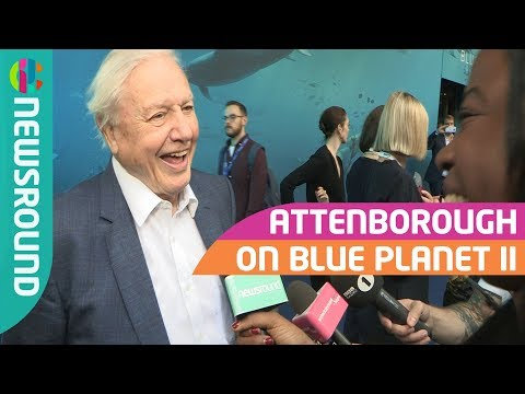 David Attenborough on Blue Planet 2