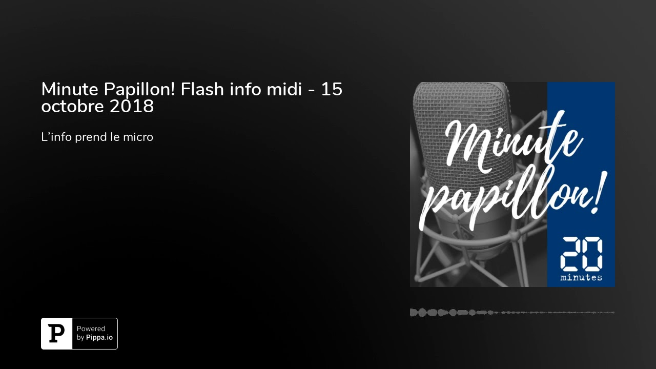 Minute Papillon! Flash info midi - 15 octobre 2018