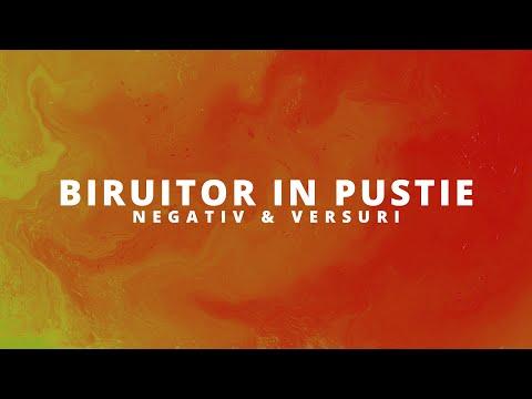 Biruitor in pustie // Negativ // (Grupul Eldad)