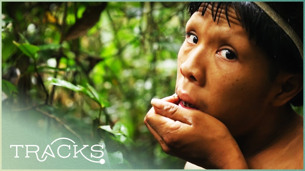 Download Antropologist Makes Contact With An Isolated Tribe For The First Time (Full Documentary) | TRACKS