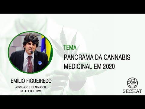 """""""Panorama da Cannabis Medicinal em 2020"""" - Com Emílio Figueiredo"""