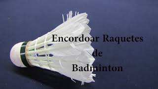 NTNQS Encordoar Raquetes de Badminton