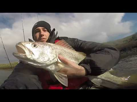 Bream & Mulloway Fishing South Australia