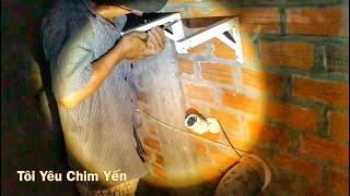 Download Video Bảo Trì Nhà Yến Định Kỳ MP3 3GP MP4