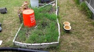 Chefs backyard NFT ready to plant