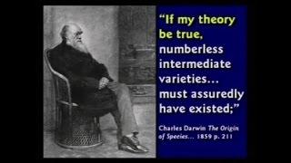 100 razloga zašto je teorija evolucije glupost - Kent Hovind(, 2015-02-26T07:27:42.000Z)