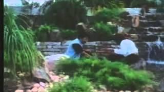 Sathi Leelavathi [1995] Telugu - Part -1