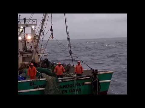 Karadenizde bir çılgın balıkçı dersiniz :)
