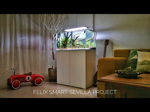 Felix Smart Project - Sevilla - Cinematic