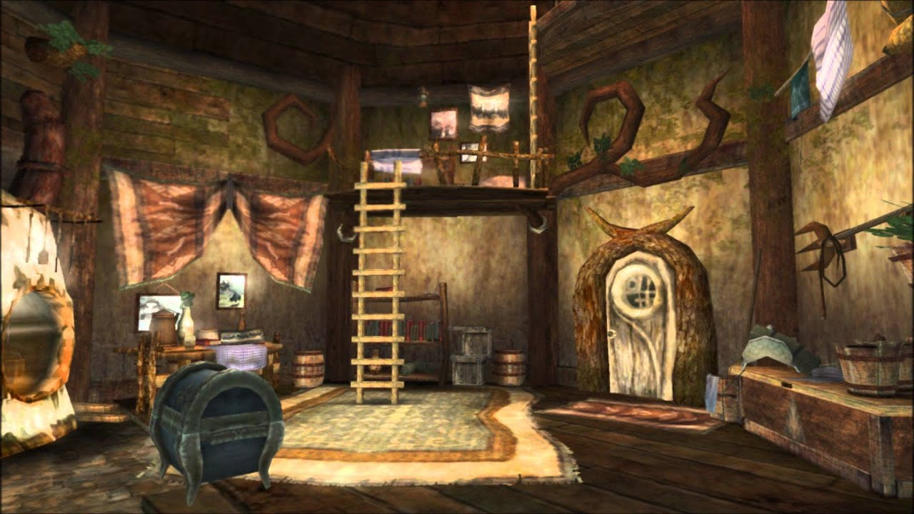 The legend of zelda twilight princess inside a house for Housse zelda