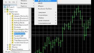 Окно данных и работа с индикаторами Форекс