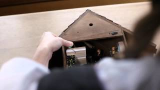 Cuckoo Clock Instruction & Service: Unpacking & Setup Instructions
