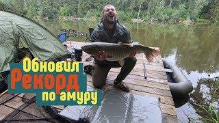 Рыбалка в кайф. Ловим карпа и амура на Львовских прудах.