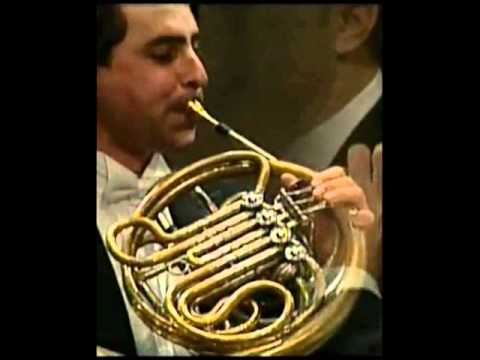 Will Sanders (Horn) playing incredibly Sinfonia Domestica by R.Strauss