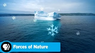 FORCES OF NATURE | Episode 1 Scene: Icebergs | PBS